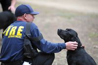 EmVP: Izzo the arson dog helps sniff out crime across state