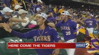 Tigers punch ticket to College World Series in Omaha