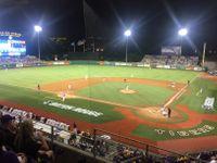 LSU baseball beats MSU, Tigers on their way to Omaha