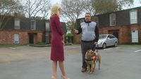 Man says he was denied job because of life-saving service dog