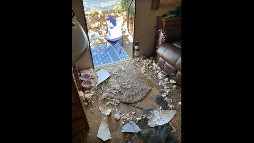 Photos Mischievous Pup Eats Through Camper Door While Owners Are Away