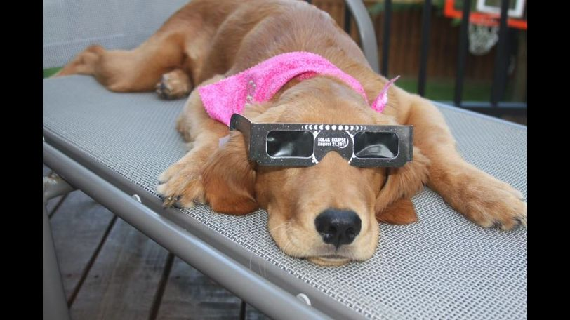 Ella was prepared for the eclipse! - Debbie Sykuta