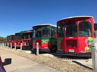 Trolley owner, witness react to fatal trolley crash in Hermann