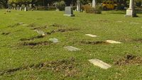 Heavy machinery drives over grave sites, creates muddy mess