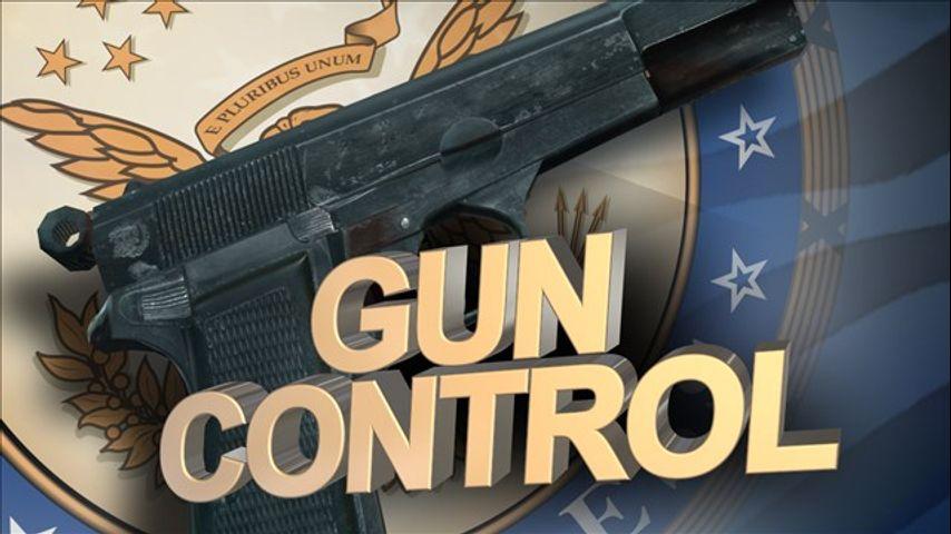 sandy hooks gun control
