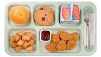 Louisiana senators shelve bill to ban 'school lunch shaming'