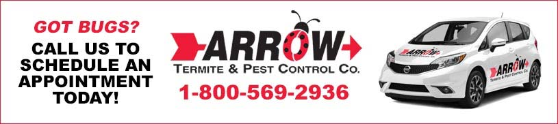 Call Arrow Pest Control to Schedule an Appointment