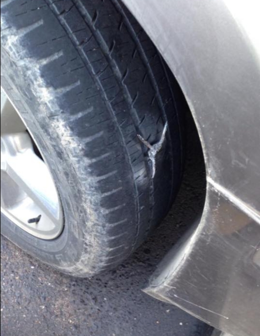 Tire Spile