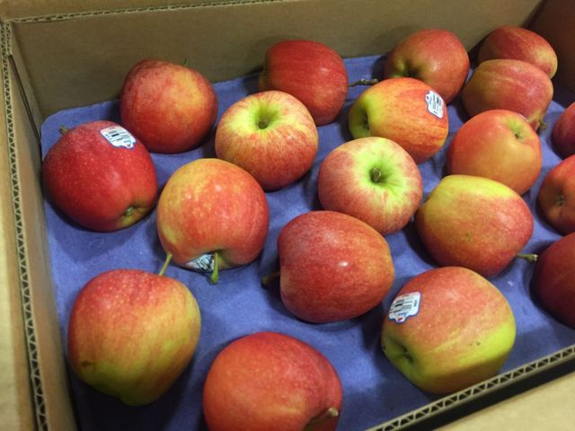 1,200 Apples were delivered to The Food Bank for Central and Northeast Missouri