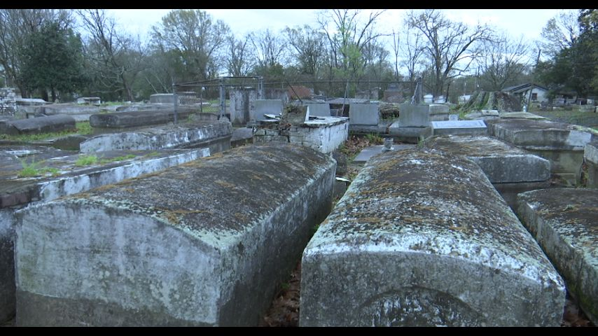 Human remains reportedly collected and removed from burial ...