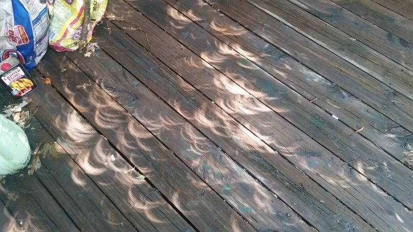 Kevin Francis caught tree shadows just before totality.