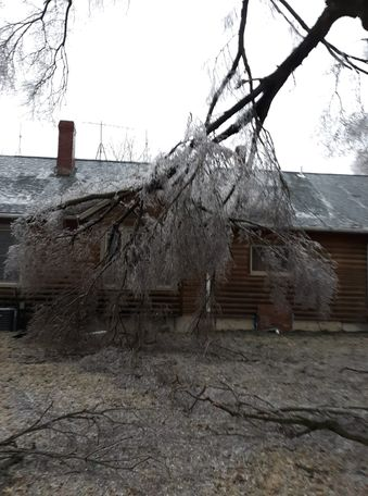 Cheri Hinners sent this picture from Bunceton. She said a large tree limb poked a hole through the roof of her house.