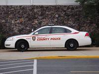 Story image: Off-duty police officer stunned with taser after resisting arrest