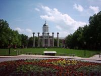 Story image: MU faculty worry buyout program could gut some departments