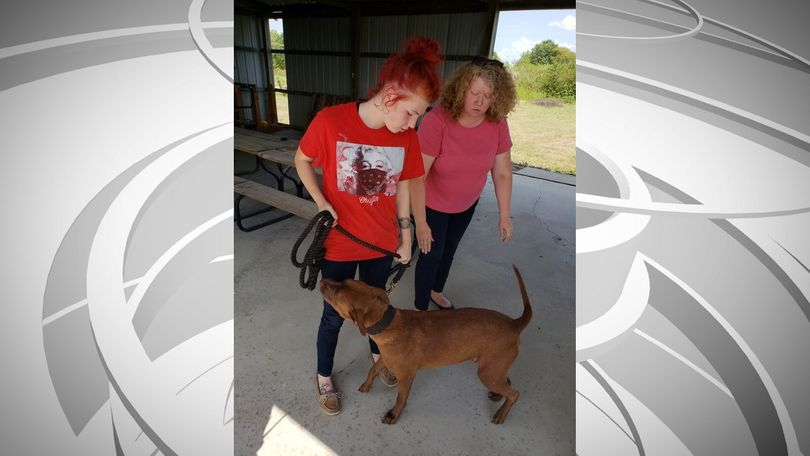 Audrain County Sheriff says the dog, named Hershey, is safely reunited with his family, who live in Eldon.
