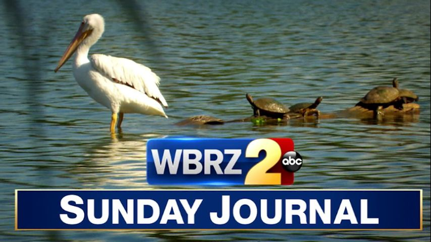 Sunday Journal: Reduce your risk in 2021