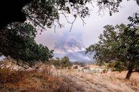 Story image: Driver killed in California blazes identified as Missouri man