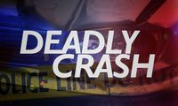 Story image: One-year-old dead after being hit by car