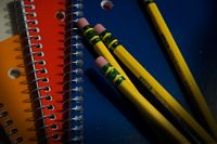 Story image: Victory by striking teachers in West Virginia prompts look at local salaries