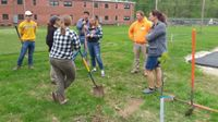 Story image: Tree project could lead campus organization to national recognition