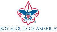 Story image: Boy Scouts file for bankruptcy due to sex-abuse lawsuits