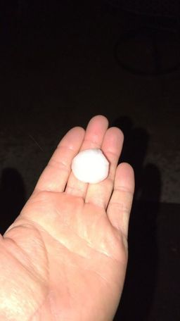 Allison Sorg sent this picture to KOMU.