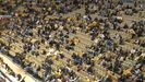 Missouri's Basketball Attendance Shows Big Drop
