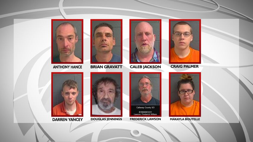 Eight sex offenders from Callaway County indicted by grand jury