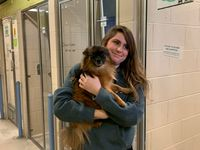 Story image: 31 animals rescued from house fire prepared for adoption