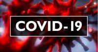 Friday COVID-19 Coverage